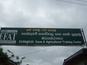 pawara-concepts-web-consultation-nature-farming