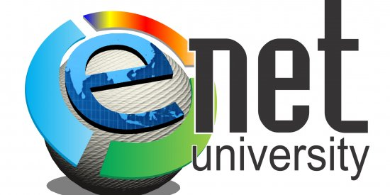 Logo Designed for E-Net University